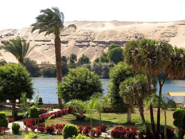 جزيرة النباتات El Nabatat Island