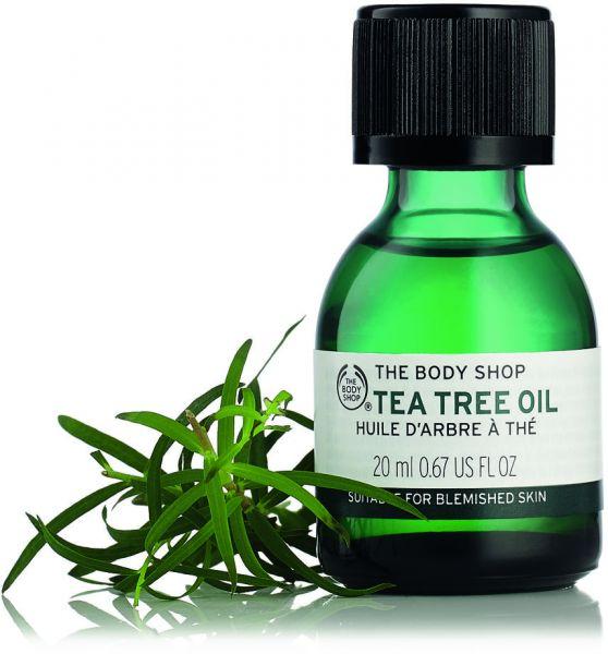 فوائد زيت شجرة الشاي Tea Tree Oil لصحة الجسم مع أضراره وموانع أستعماله