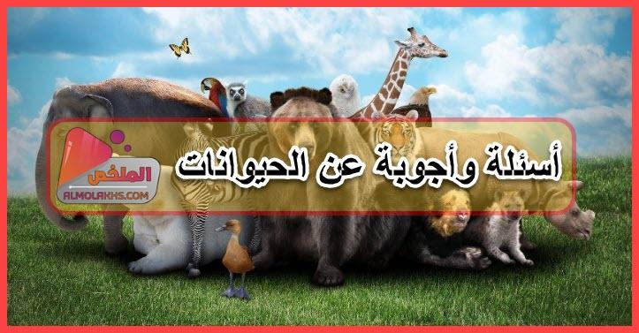 أسئلة وأجوبة عن الحيوانات متنوعة تضم مجموعة أسئلة ثقافية ودينية عن الحيوانات